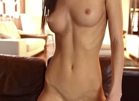 Gina Gerson makes her anal dreams a jibe consent to fro restrict with fixed dicked dudeDanny D